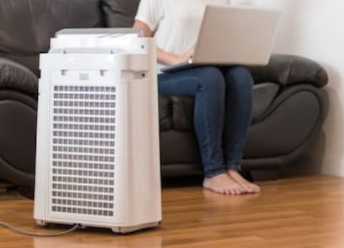 Finding the Right Air Purifier for Your Home